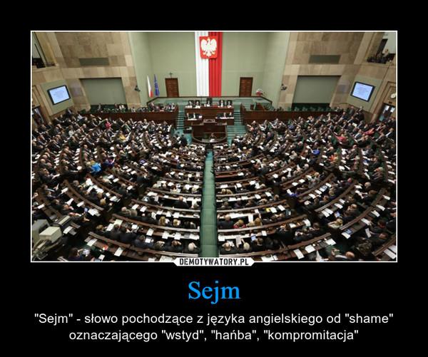 """Sejm – """"Sejm"""" - słowo pochodzące z języka angielskiego od """"shame"""" oznaczającego """"wstyd"""", """"hańba"""", """"kompromitacja"""""""
