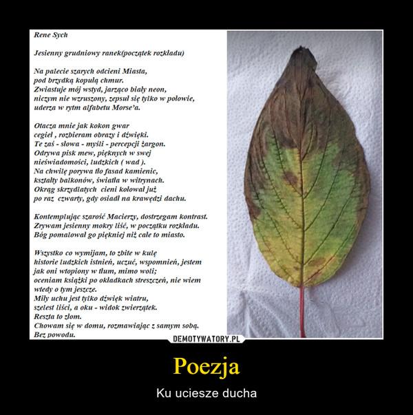 Poezja – Ku uciesze ducha