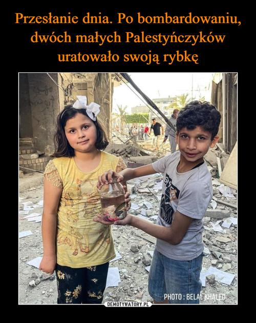 Przesłanie dnia. Po bombardowaniu, dwóch małych Palestyńczyków uratowało swoją rybkę
