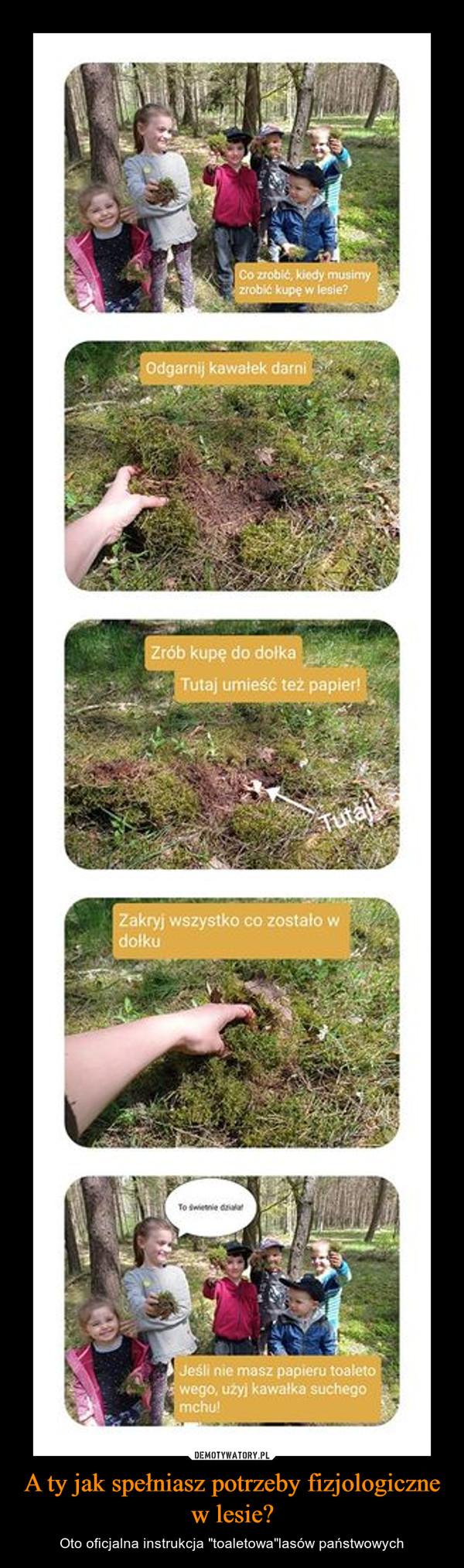 """A ty jak spełniasz potrzeby fizjologiczne w lesie? – Oto oficjalna instrukcja """"toaletowa""""lasów państwowych"""